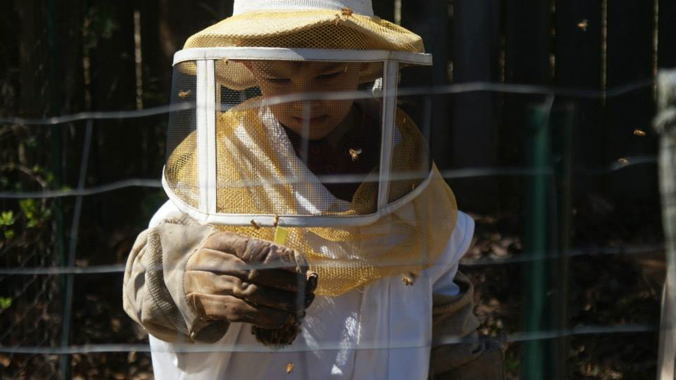 Reid, the youngest beekeeper at Grateful Trees & Bees, checks out the new bees before hiving the queen.