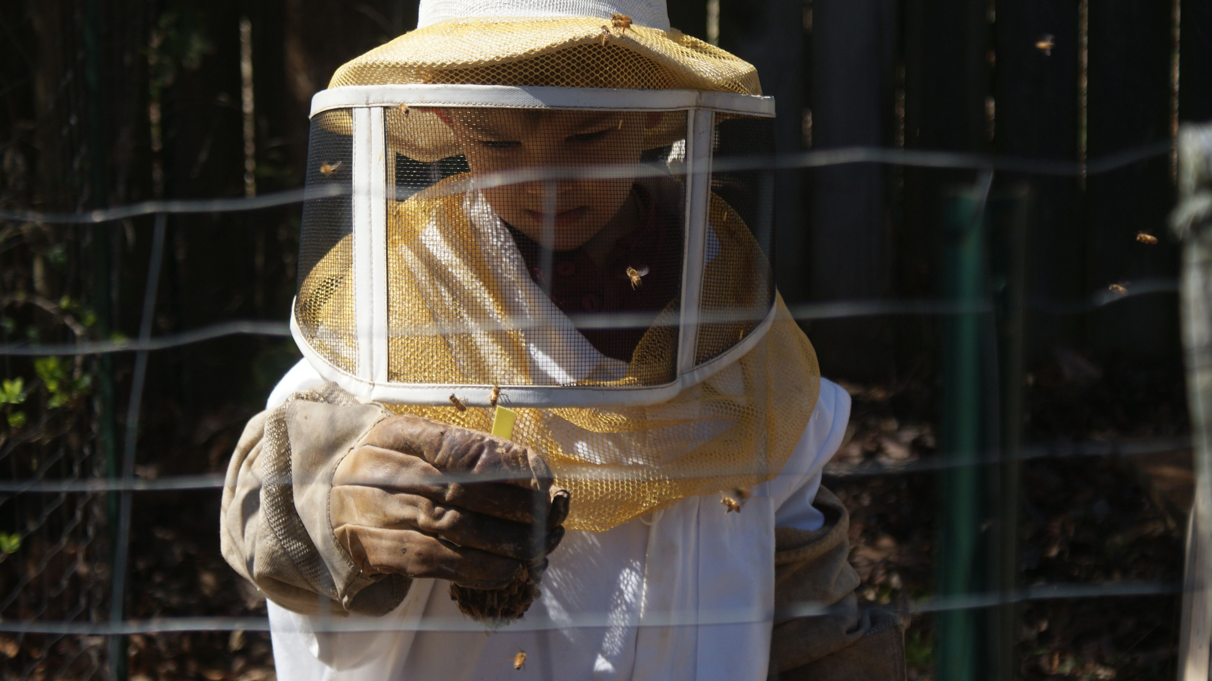 Beekeeper with Queen Cell