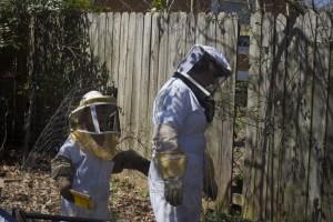 Beekeeper's Suit