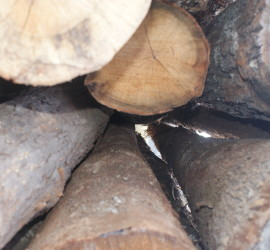 Round Log Timber Sales